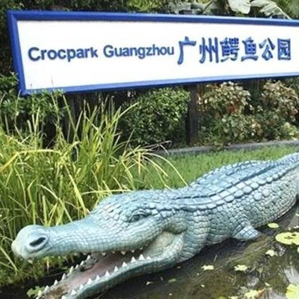 """因为这里名气没有""""长隆野生动物园""""大,园区内没有老虎,狮子,大象等"""