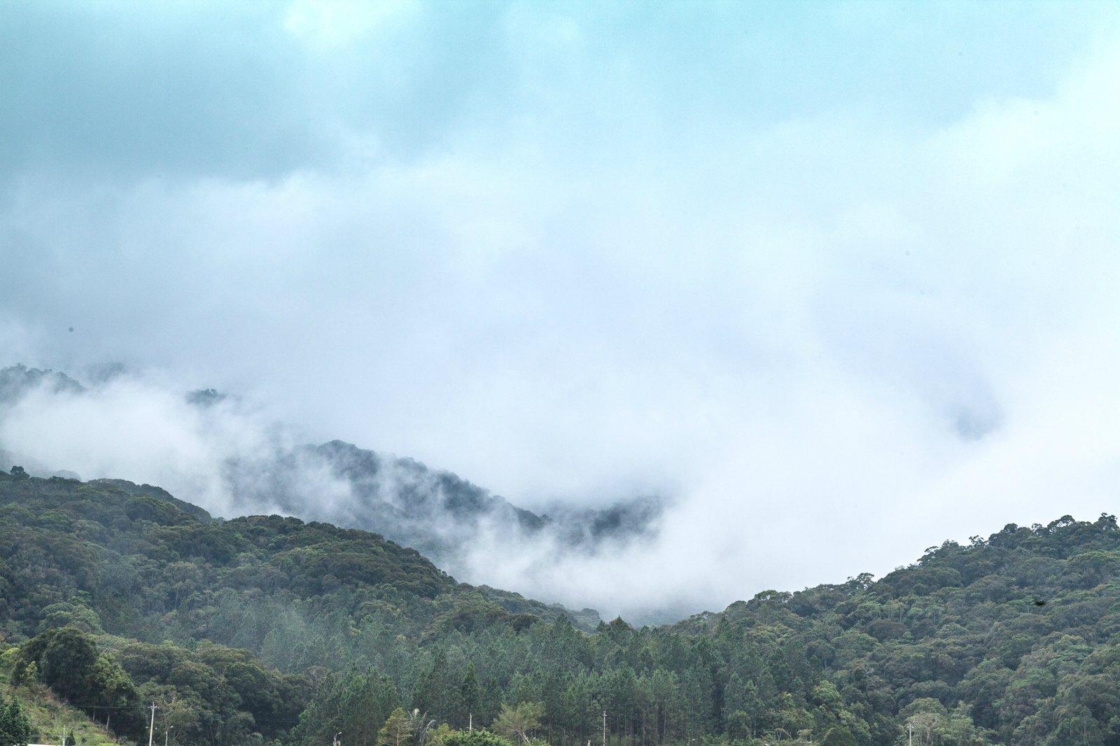 氤氲弥漫中的尖峰岭国家森林公园