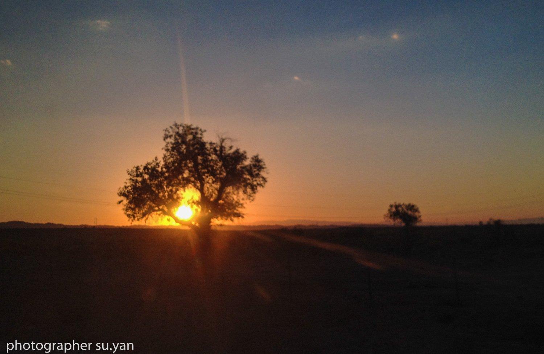 """和""""西域""""人在一起的日子——新疆一月"""