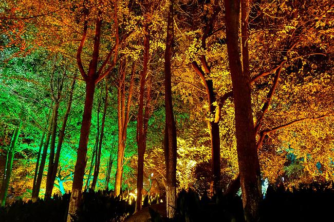 日月双塔文化公园图片