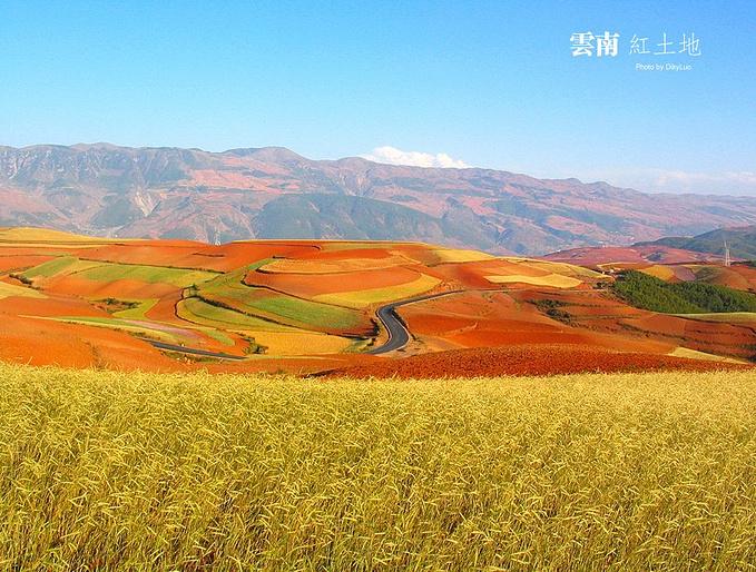 七色地�_查看详情 说到毛球的七色土,我就想起云南的红土地,这是十年前我和熊