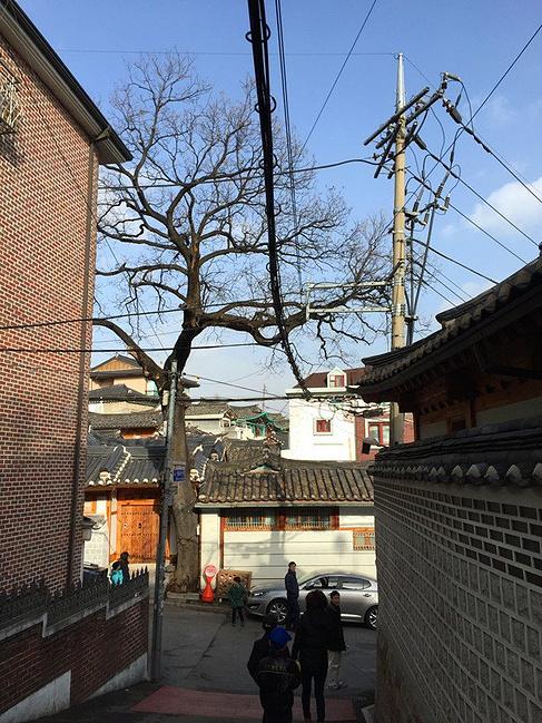 四人小分队的首尔冬季恋歌【附攻略v攻略攻略】如小游戏龙乐天图片