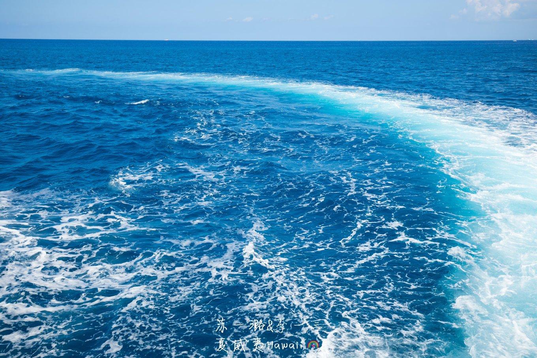 【中国老司机 自驾游全球】夏威夷蜜月游(欧胡岛+大岛自驾)上篇