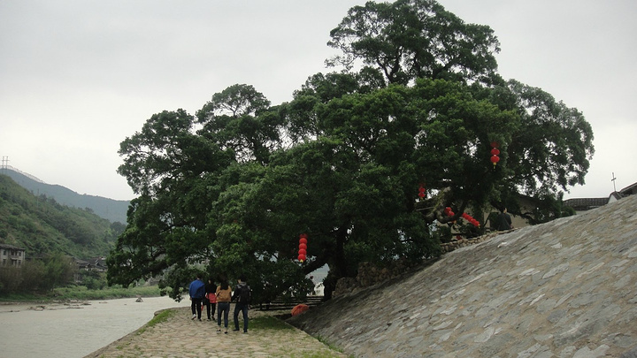 【景点攻略】嵩口古镇位于福建省福州市永泰县西南部嵩口镇;【景点猫交通之养快穿图片
