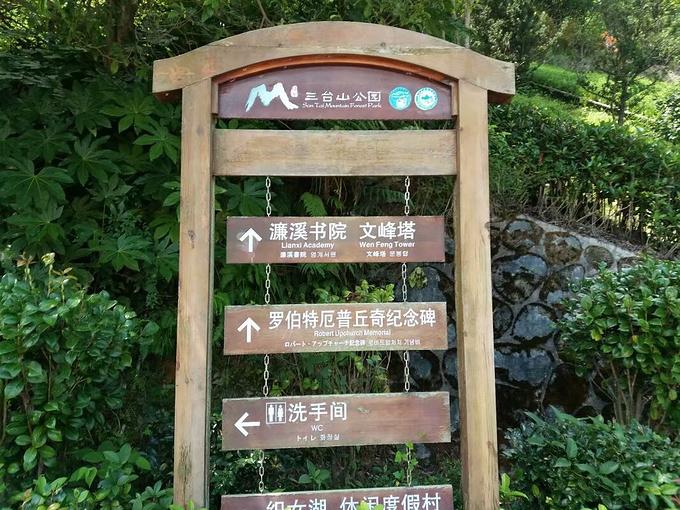 桂东三台山森林公园图片
