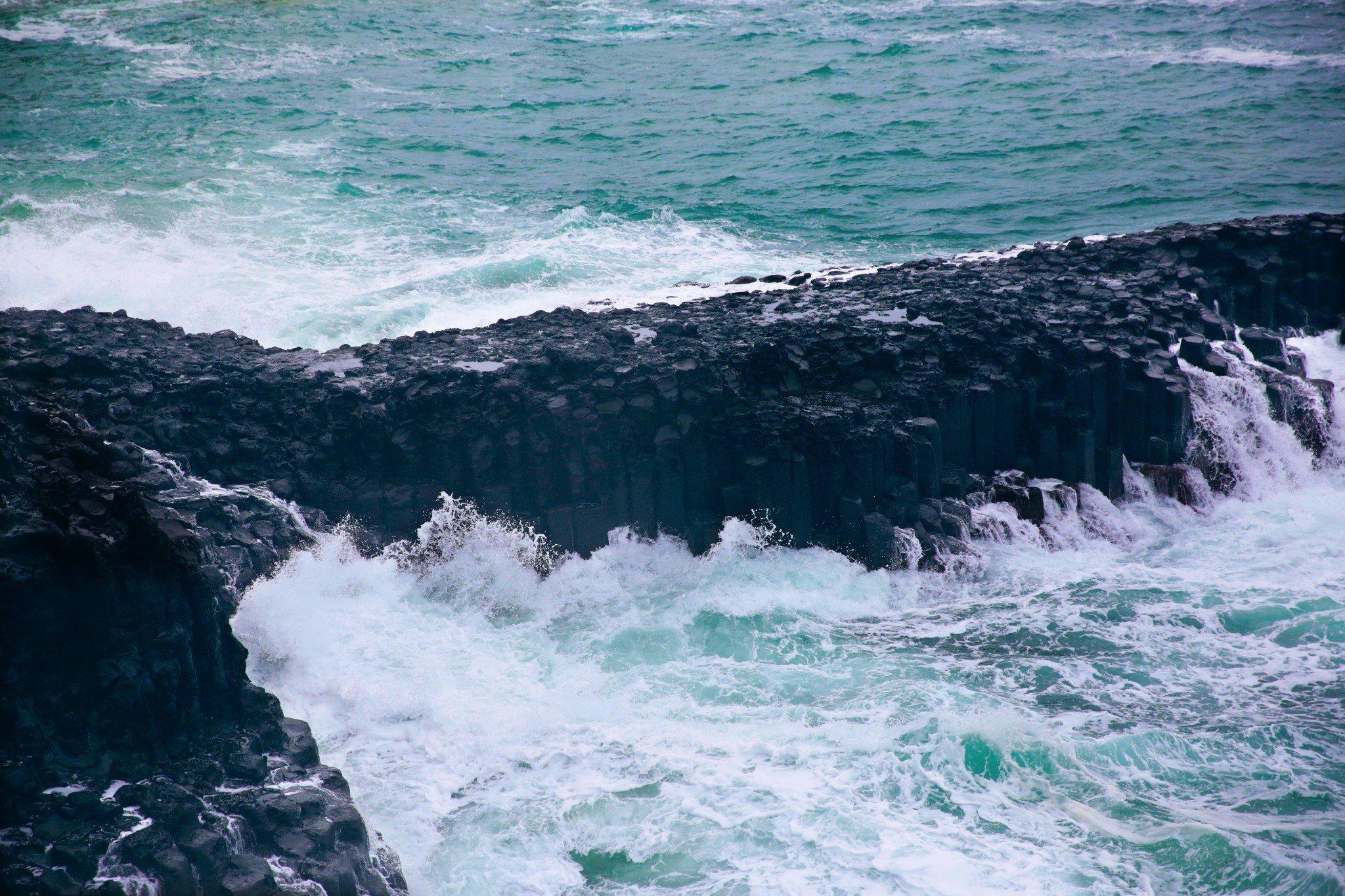 我在济州岛,呼吁大家排排队。