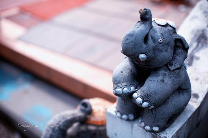 """""""到处都是象的雕塑,很萌很可爱"""