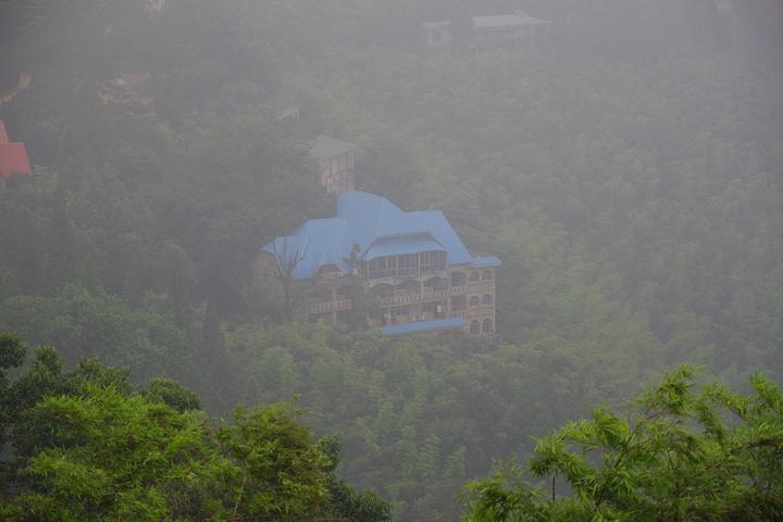 2019莫干山攻略游玩攻略,.气息,并且在山上伊豆景区一日游半岛图片
