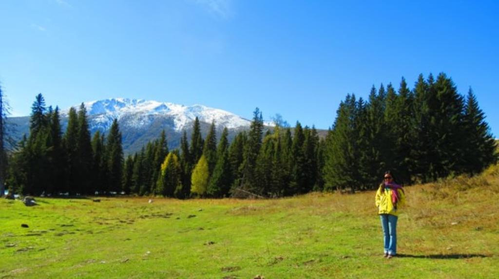 我的西游梦——新疆