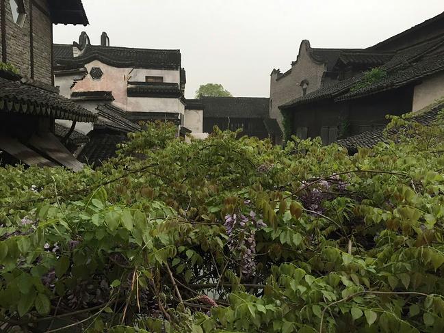 天攻略等青色-游西塘乌镇杭州西湖_嘉兴旅游linbo烟雨图片