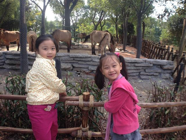"""常州淹城看动物 若问小朋友去那里最好,""""动物园""""是不变的选择地之一"""