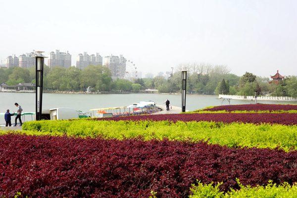 西部以盆景园为中心,周围有动物园,花房,溜冰场,餐厅和百花园.