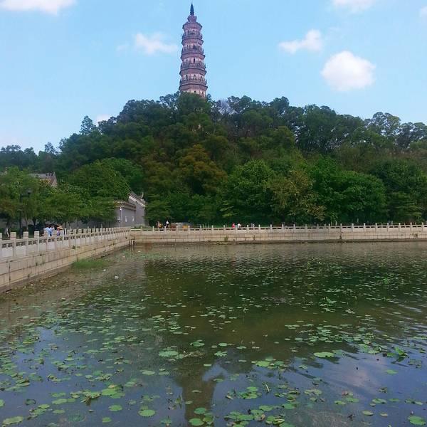 顺峰山公园除了有大牌坊,还有两个湖(青云湖和桂畔湖),两个塔(青云塔