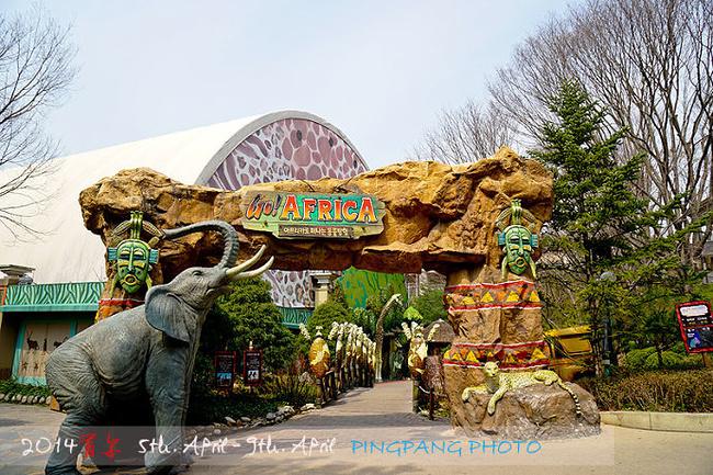 值得一提的便是野生动物园了,乘坐园内巴士,您便可以近距离观赏到野生
