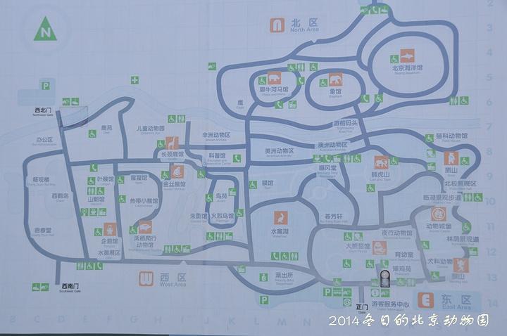 """棕熊们继续他们的玩耍_北京动物园""""的评论图片"""