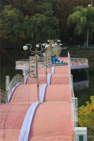 2016每年的春秋在孔之川旁边的林荫大道上举办夜灯展览 孔之川游园高清图片