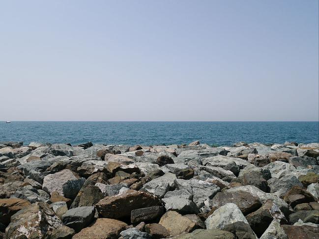 迪拜水族馆&海底世界动物园图片