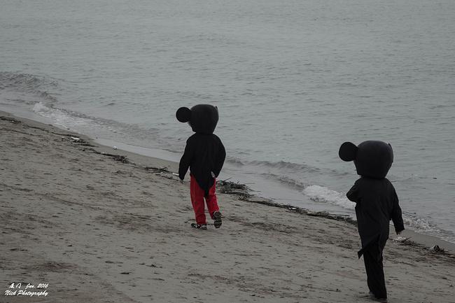 今天很少有小朋友来这里,只好自己散步了~看着这两个人的背影不知为啥