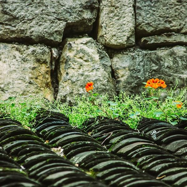 乌江上的一颗遗珠。在重庆、贵州、湖南、湖北,四省市交接之地,有一座历史悠久、民风淳朴、风景秀丽的古镇。它是镶嵌在碧绿乌江上的一颗璀璨明珠,然而千百年来却一直鲜为人知。 碧绿的乌江畔,层叠的吊脚楼,闪光的石板街道,完整的土司文化:这里是重庆最负盛名的第一古镇,龚滩。 从1700余年沧桑风雨中走来的古镇龚滩,是重庆市第一历史文化名镇,国家4A级旅游景区,全国最美山水古镇,有绝壁上的音符的美誉。然而千百年来,这座小镇却一直隐没在乌江畔边,不被人发现。直到上个世纪国画大师吴冠中无意中来到这里,被这个古朴的江边小
