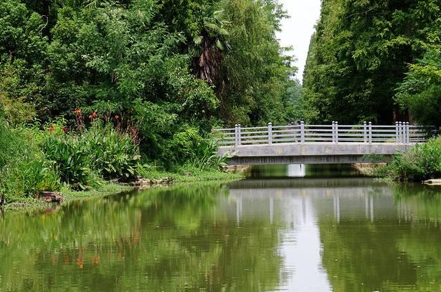 东平国家森林公园旅游攻略