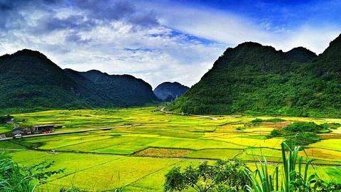 荔波茂兰自然风景区