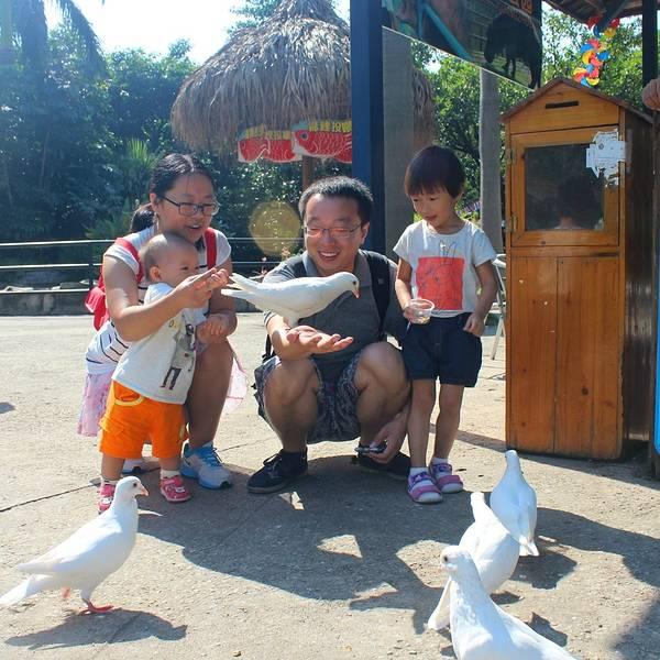 各种知识科普秀,比长隆野生动物园更有知性的魅力