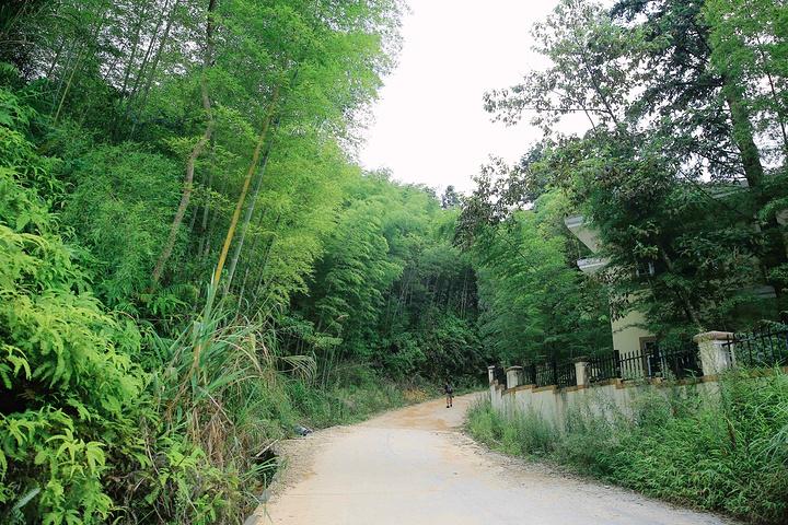 """南昆山国家森林公园""""的评论图片"""
