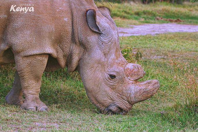 甜水野生动物保护区图片
