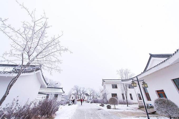 唐宫温泉别墅图片
