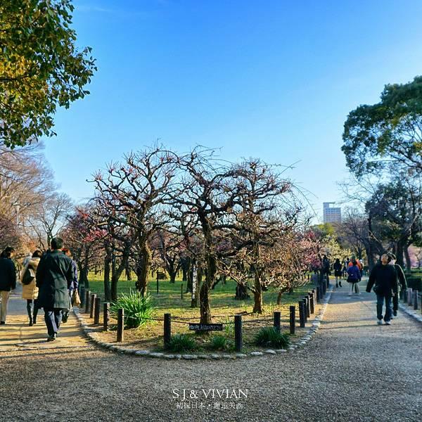 2019大阪城攻略公园,大阪大阪城密室游玩公园逃脱攻略与门票火冰图片