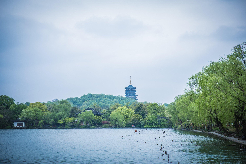 杭州的歌,西湖的诗——周末自驾亲子游