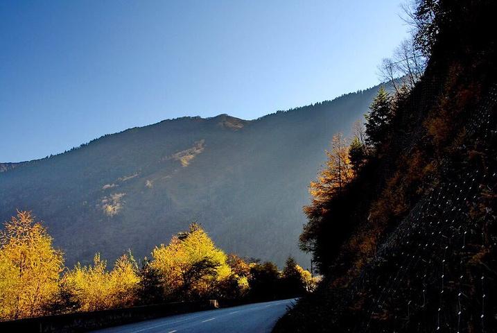 也在熊猫沟内.这是巴朗山沿途风景.