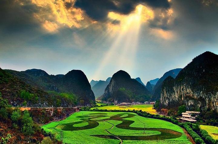 """贵州油菜花景自以""""立体多层,起伏跌宕""""的油菜花景观著称,尤其以安顺"""