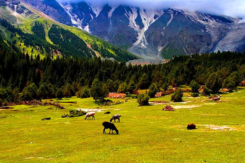 风景区位于奥依塔克镇西部丛山之中,海拔在2800米左右,距离阿克陶县城