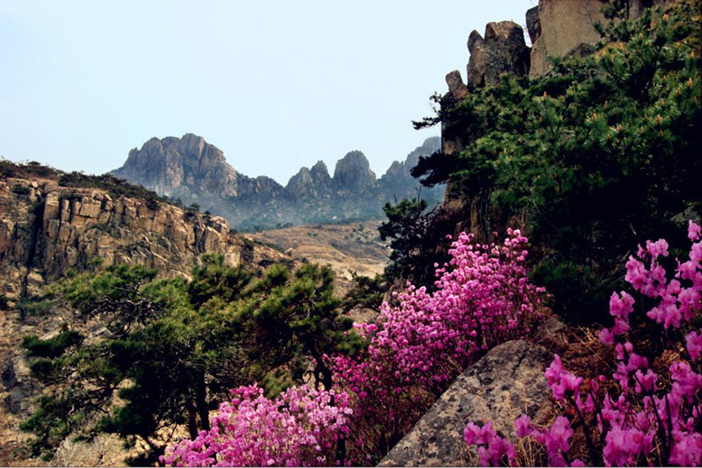 天崮山旅游景点图片