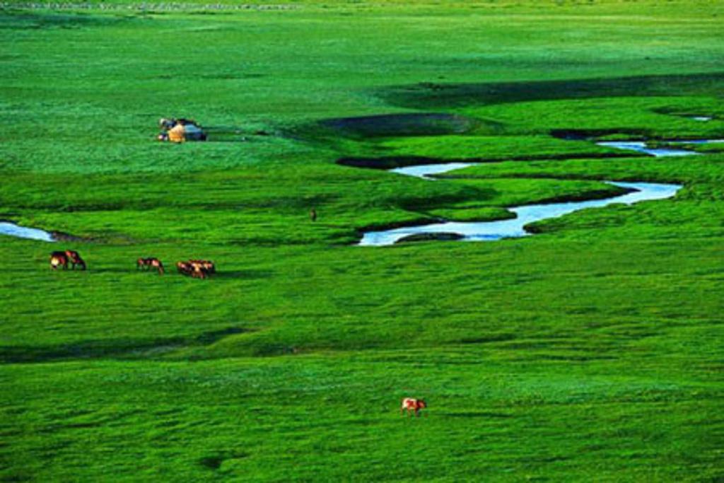 灯笼河草原位于赤峰市西北部,方圆143平方公里。每到夏季,这里芳草萋萋、鲜花盛开、蜂飞蝶舞、青山妩媚,景色十分秀丽。在这里,你会觉得天格外蓝,草格外绿,花鲜水美,空气清新。 闲来无事,四处走走,女阴山和男根岭壁立森森,岩崖陡峭;十三太保遗迹和传说更是引人遐思;独自坐落在草原花海的盘龙石,高数丈,兀然挺立,遗世临风,仿佛来自天外,四周泉水渗涌,润草育花,清冽甘甜。 草原上的赛罕庙已有300多年历史,据传为康熙北征时所建,由一块巨石雕刻而成,它古朴黄雅,精巧别致,里面供奉了一尊塞北灵验佛,至今香火不断。