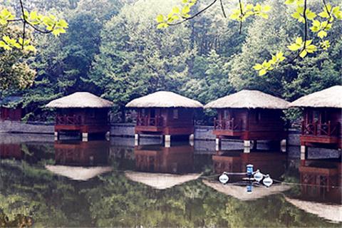 宜春農村別墅房子圖片