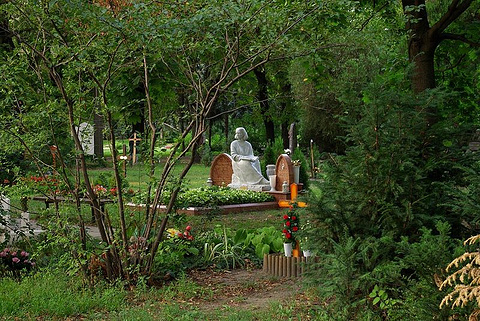 霸州森林公墓图片
