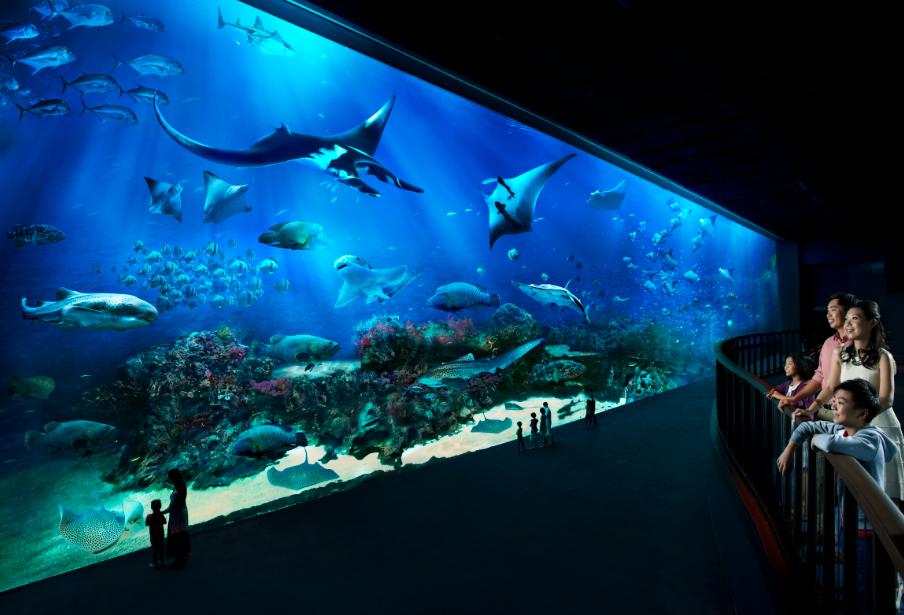 幼儿园玻璃海洋世界