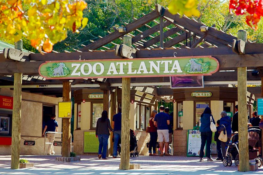 亚特兰大动物园旅游景点图片