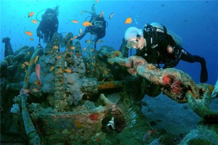 壁纸 海底 海底世界 海洋馆 水族馆 桌面 450_300