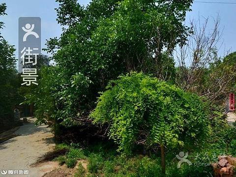 2015【北京特色美食餐厅】广州a特色攻略介绍北京西华美食荔湾区路图片