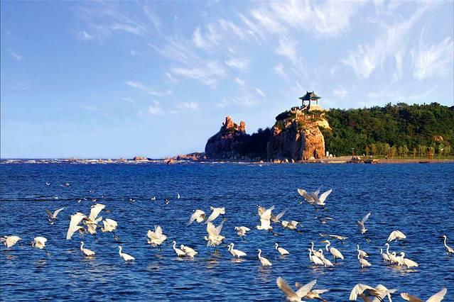 美食景点 秦皇岛是北方一座著名的海滨城市,这里的旅游产业也非常