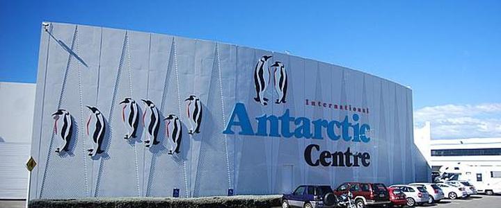 纸箱手工制作南极