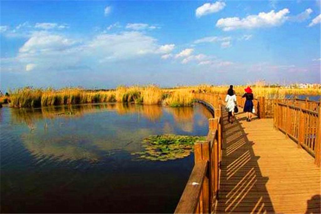 滇池生态景观湿地公园旅游景点图片