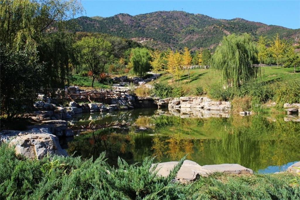 法海寺森林公园图片