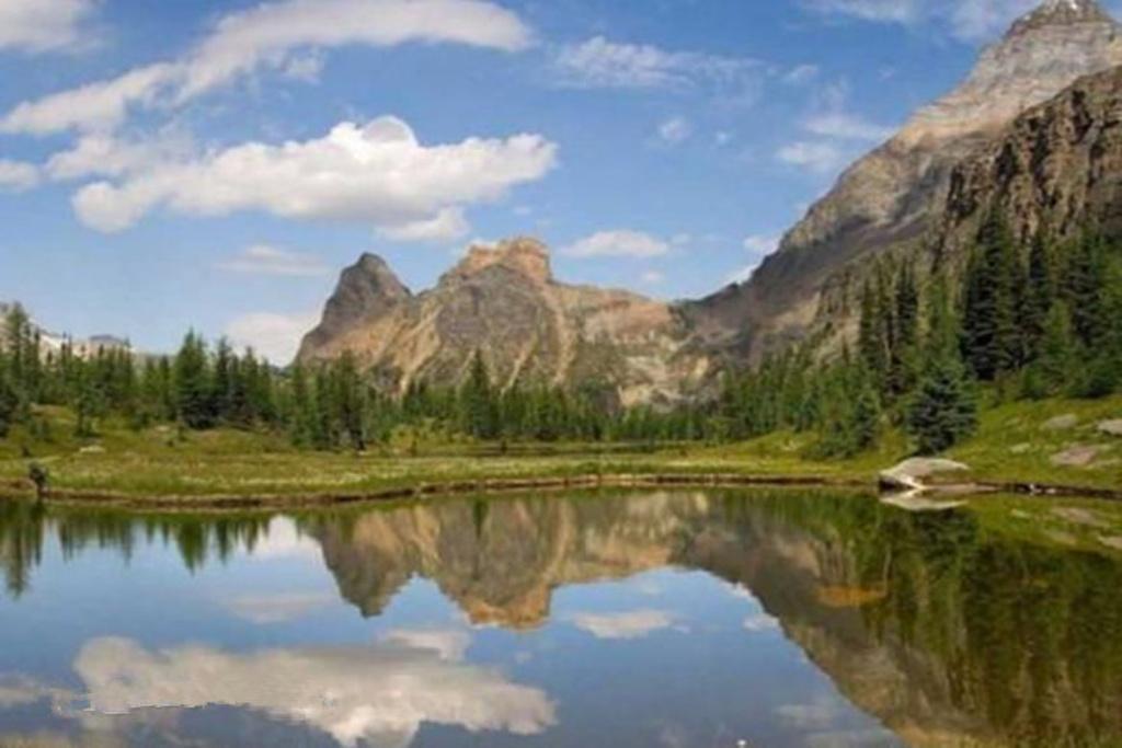 绛北大峡谷旅游风景区,位于山西省绛县么里镇境内,观赏面积20平方公里,是晋南地区最集中的以吃、住、游、玩为一体的生态旅游境地。 绛北大峡谷旅游风景区森林覆盖率达百分之九十五以上,并有多处原始森林,整个景区主要以核桃园、香菇种植、森林、湖泊为主体;以晋南民俗为基调;自然与人文水乳交融,相辅相成。最刺激的峡谷漂流: 漂流河道总长5.