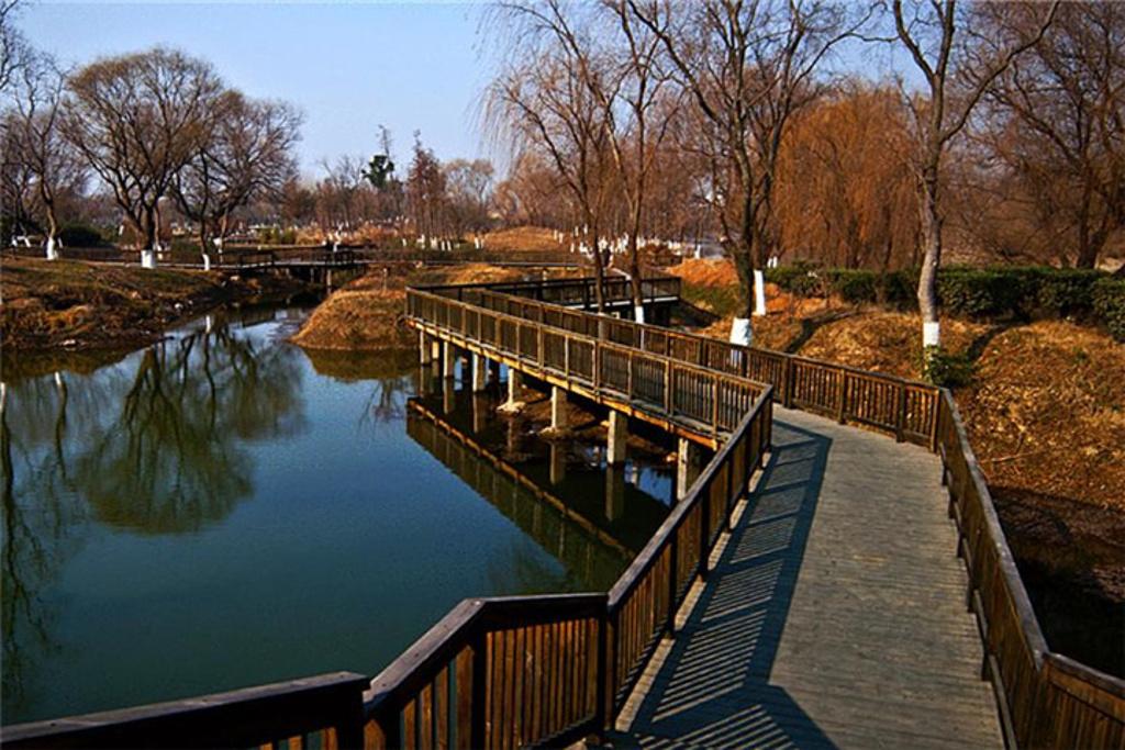 七桥瓮生态湿地公园