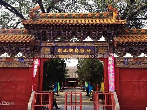 中华神医扁鹊庙旅游景点图片