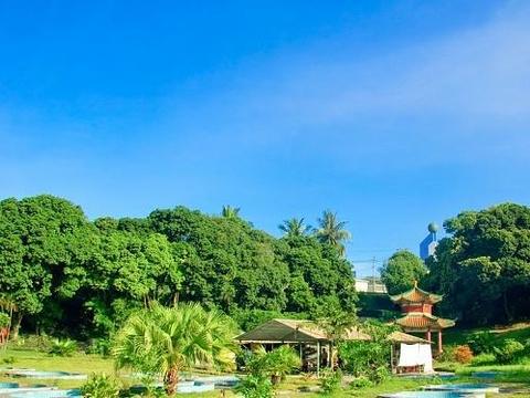 蓝洋温泉国家森林公园位于海南省儋州市,距海口市135公里,距洋浦开发